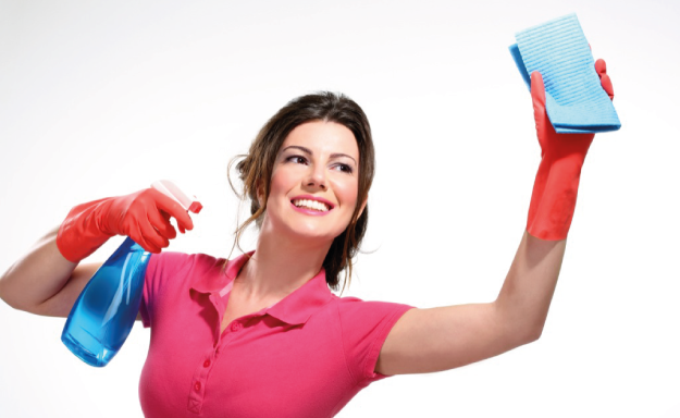 Professional Temporary Cleaning, Rosca Group