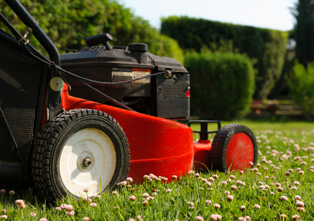 Garden Maintenance made easy with our Gardening Services